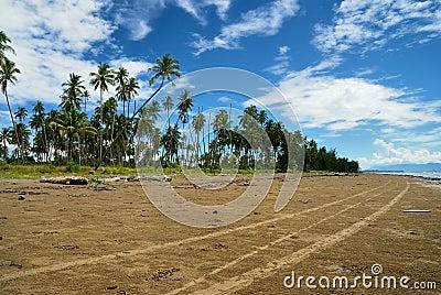 Abandoned beach