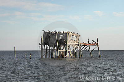Abandoned stilt house in Cedar Key, Florida