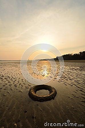 Abandoned tyre