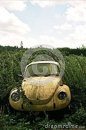 Abandoned VW beetle car