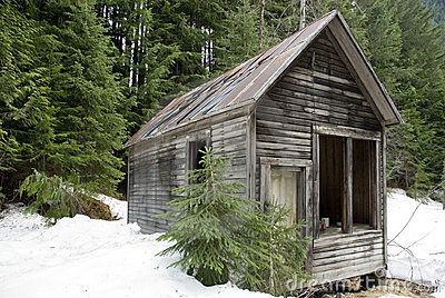 Abandoned Wilderness Cabin