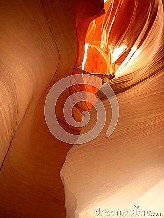 Abbassi il canyon della scanalatura dell antilope