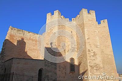 The Abbey of Saint-Victor de Marseille