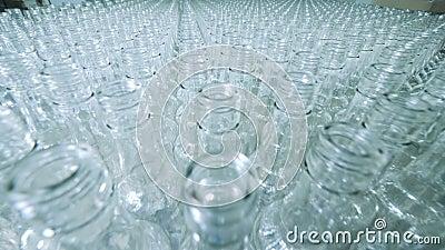 Abbondanza delle bottiglie di vetro su un trasportatore, produzione alcolica stock footage