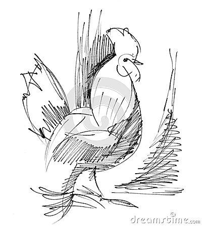 Abbozzo del gallo
