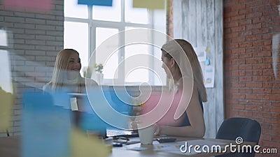Abmachung Frau arbeitet mit dem Kunden zusammen und diskutiert geeignete Idee 4K stock video