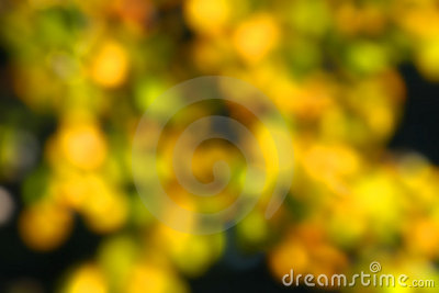 Abstract autumn blur