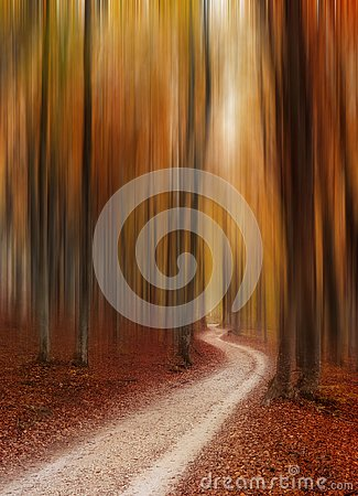 Free Abstract Autumn Forest Magic Background Royalty Free Stock Photography - 129974017