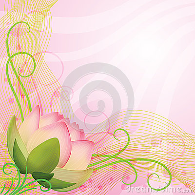 Abstract background pink lotus flower