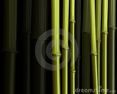 Abstract bamboo forest foliage jungle illustration