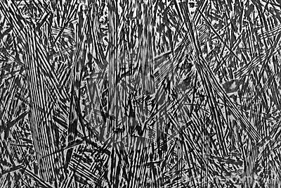 Abstract black-and-white striped structure
