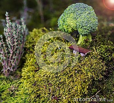 Abstract Broccoli
