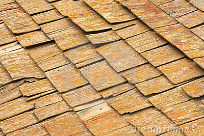 Abstract Cedar Shingles