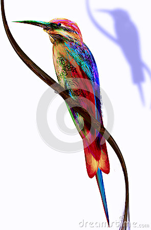 Abstract colorful bird.  Bee-eater
