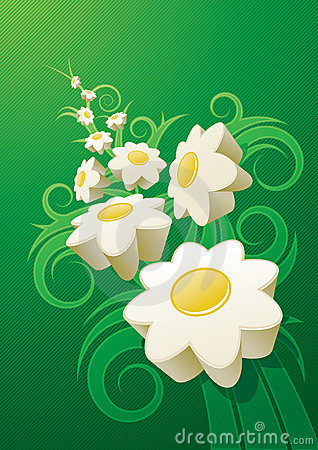 Abstract daisy background.