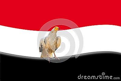 Abstract egyptian flag