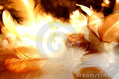Abstract feathery background