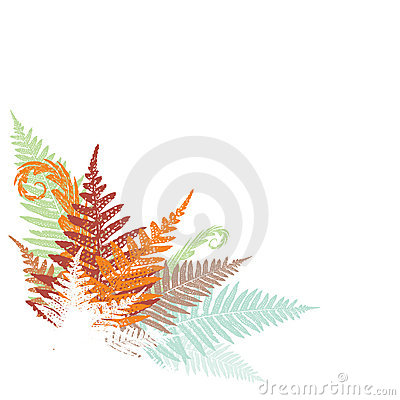 Abstract fern design element