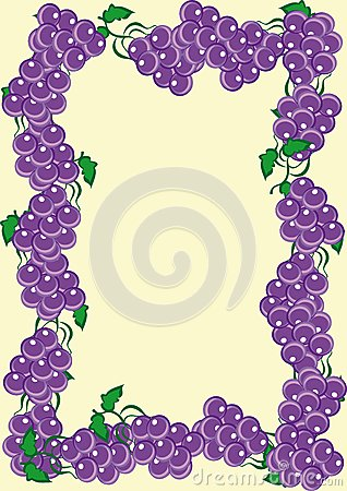 Abstract frame from rods of dark blue grapes
