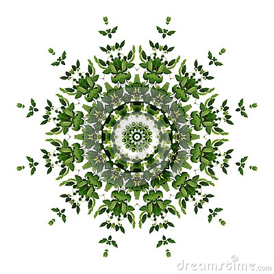 Free Abstract Green Background Flora Mandala Pattern, Wild Climbing V Royalty Free Stock Photo - 109163985