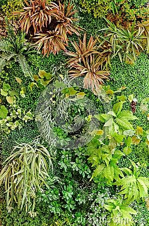Abstract green garden background