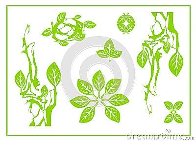 Abstract green leaf, spa, tribal symbol, yoga, circle leaf sing, nature design, green tea Vector Illustration