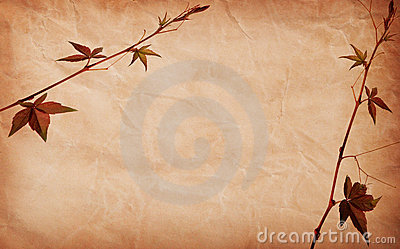 Abstract grunge texture background with leafs