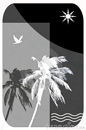 Abstract Illustration for Tropical Travel, Palm Trees, Seagulls,