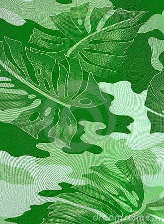 Abstract leaves of green rubber-plant
