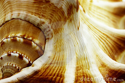 Abstract macro shells
