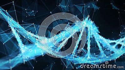 Abstract Motion Background - Digital Binary Polygon Plexus DNA molecule 4k Loop stock video