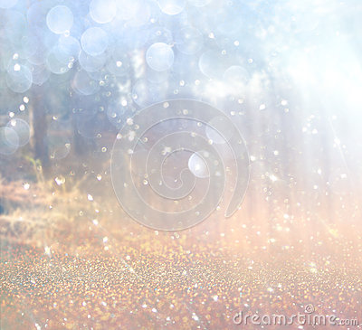 Free Abstract Photo Of Light Burst Among Trees And Glitter Bokeh Lights. Image Is Blurred And Filtered Royalty Free Stock Photo - 47647955
