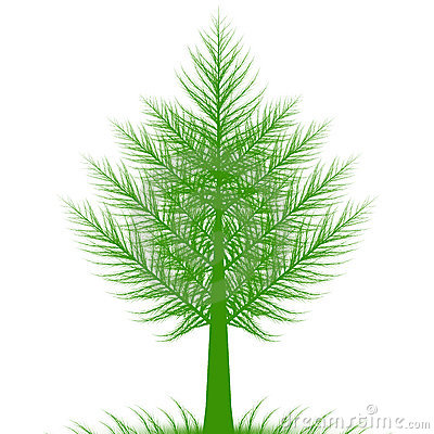 Abstract pine tree