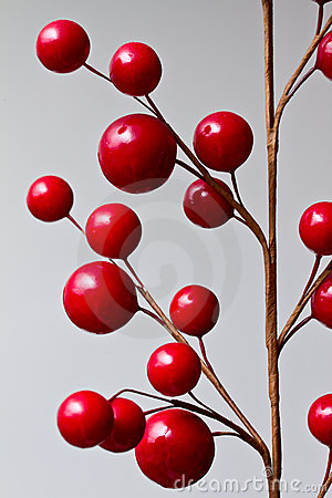 Abstract red berries