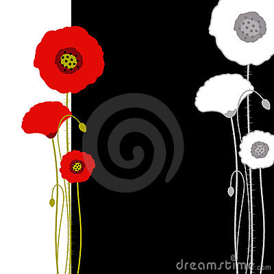 Free Abstract Red Poppy On Black And White Background Stock Photos - 19064353