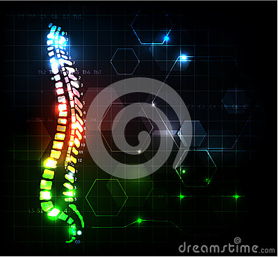 Free Abstract Spine Royalty Free Stock Images - 27709459