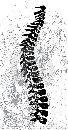 Abstract spine design
