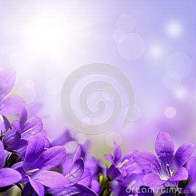 Free Abstract Spring Background With Purple Flowers Stock Photo - 39256630