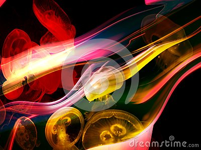 Abstract Squid background image