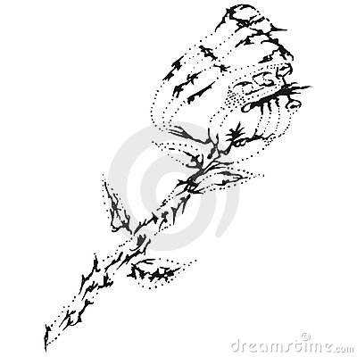 Abstract stylized B&W rose flower