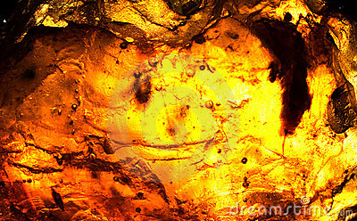 Abstract of sunlight passed throughout rosin
