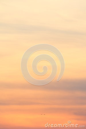 Free Abstract Sunset Royalty Free Stock Image - 43679346