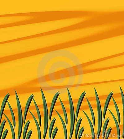 Abstract Sunshine Grass