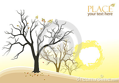 Abstract Trees and Sun Background