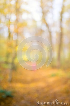 Free Abstract Unfocused And Soft Background For Design. Path In The Woods. Magical Autumn Forest With Blur Technique Royalty Free Stock Photo - 125185315