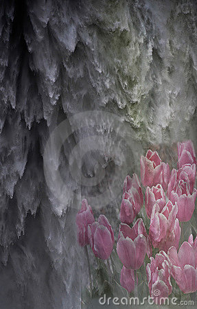 Abstract Waterfalls And Tulips Stock Photos - Image: 21894653