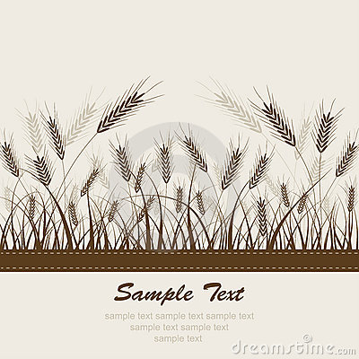 Abstract wheat background