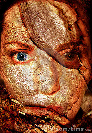 Free Abstract Woman Cracked Face Royalty Free Stock Images - 20809