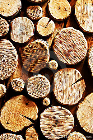 Free Abstract Wood Log Background Royalty Free Stock Images - 5551749