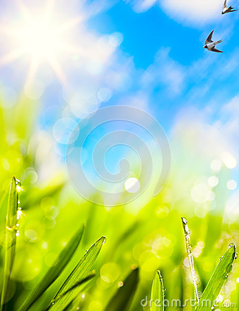 Abstracts of natural spring background Stock Photo
